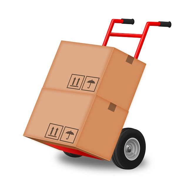 Hand Truck Moving Boxes