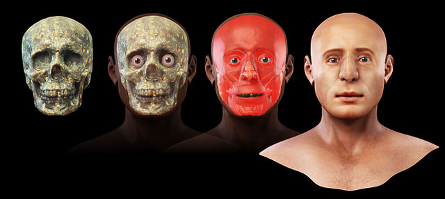 Steps Of Facial Reconstruction